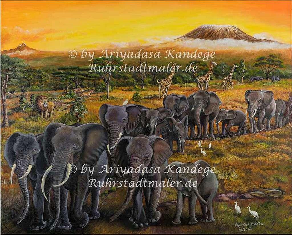 Elefantenherde am Kilimandscharo